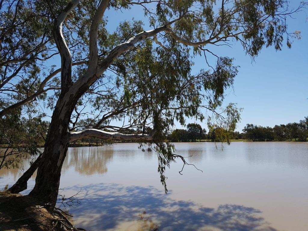 Urana - NSW > Aussie Caravanning Lifestyle
